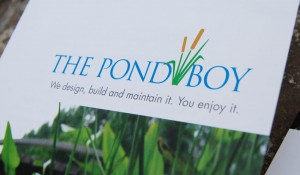 The Pond Boy Identity